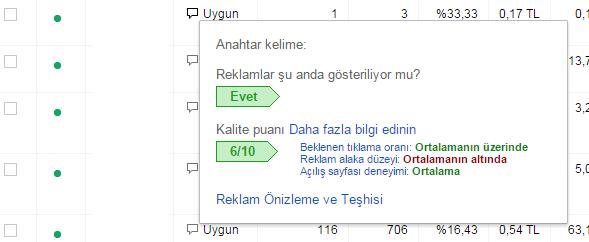 google-adwords-kalite-puani-değerlendirme